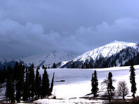 Srinagar Mohanmarg Day Trek